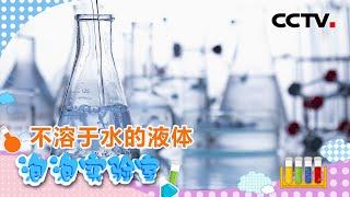 《泡泡实验室》不溶于水的液体 | CCTV少儿