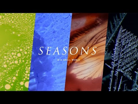SEASONS - in a Small World