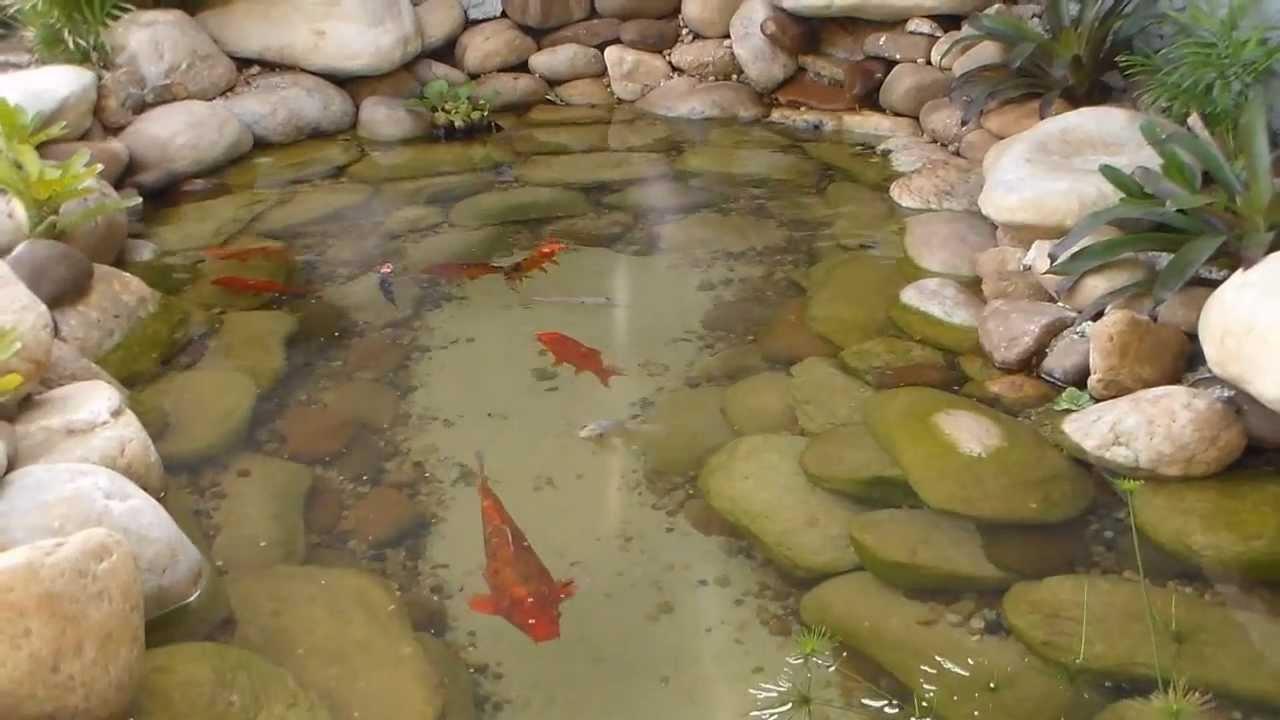 Lago ornamental 70 pedra artificial bonsai avar for Como construir un lago artificial