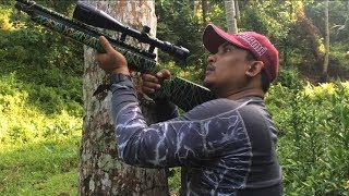 Download Video BIRD HUNTING: We killed a. MP3 3GP MP4