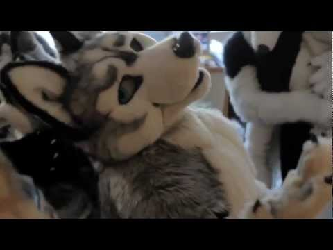 Furry Gay & Lesbian from YouTube · Duration:  3 minutes 27 seconds
