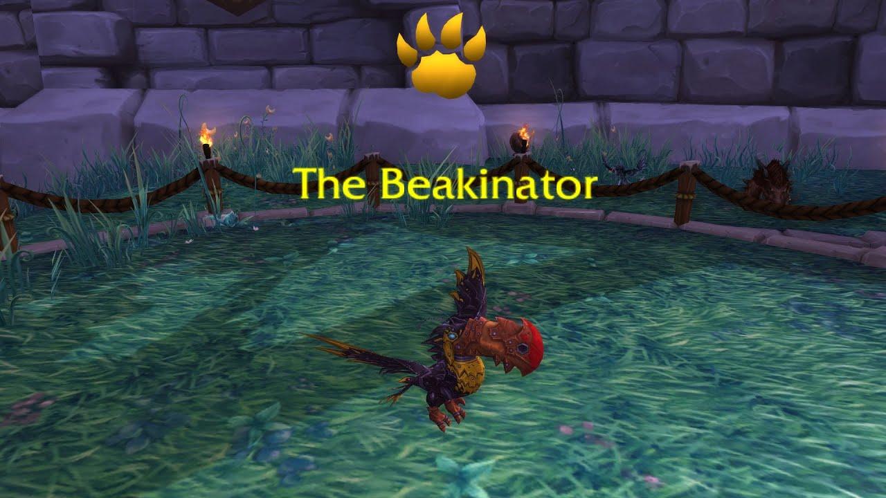 World of Warcraft Pet Battles Guide | GuideScroll