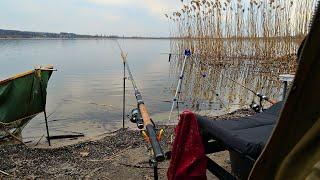Фидерная рыбалка весной на водохранилище Травянка