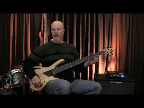 Lightwave Saber VL5 fretless bass