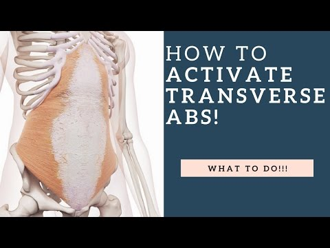 How To Activate The Transversus Abdominis (TA) Muscle & Strengthen It!