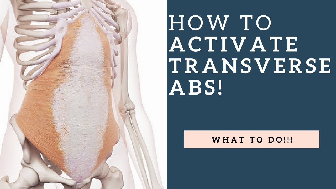 How To Activate The Transversus Abdominis (TA) Muscle & Strengthen ...