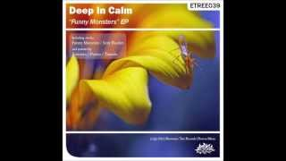 Deep In Calm - Funny Monsters (Kawatin Remix)