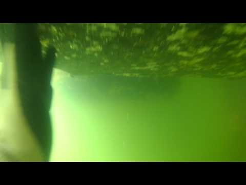 Floating dock cleaning part 2