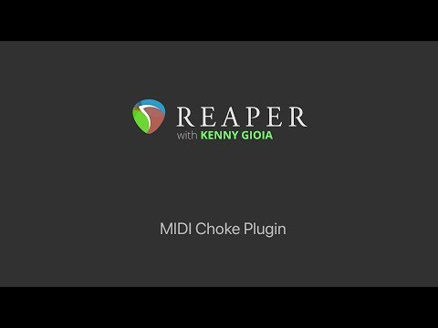 MIDI Choke Plugin in REAPER