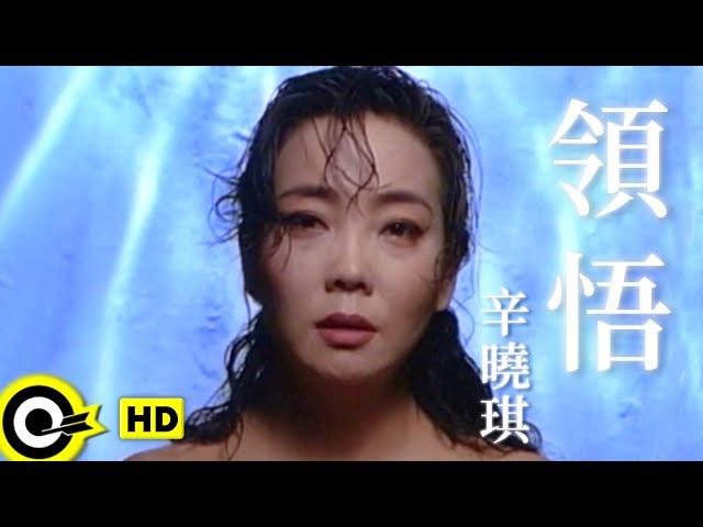 辛曉琪 Winnie Hsin【領悟 Understanding】Official Music Video