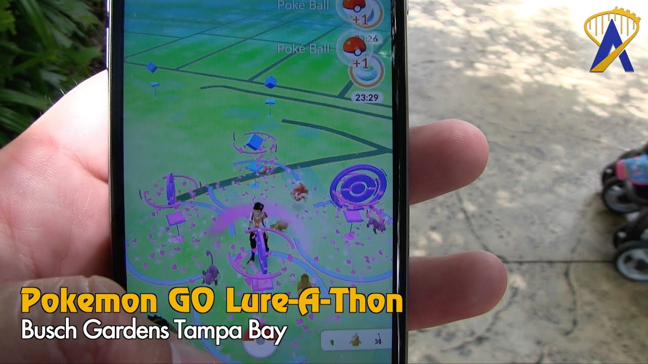Pokemon GO Theme Park Lure A Thon at Busch Gardens Tampa YouTube
