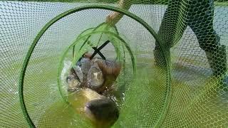2 я рыбалка в Ставропольском крае