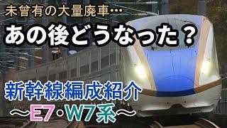 新幹線編成紹介 ~E7・W7系~ 【ゆっくり解説】