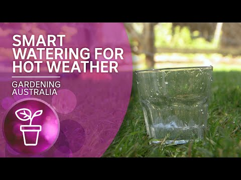 Smart watering to reduce air temperature