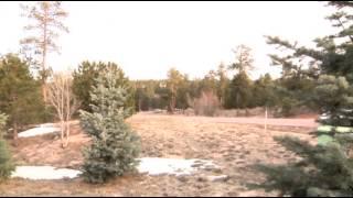 Colorado Authorities Seek 2 With Gang Ties