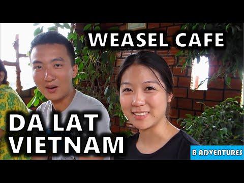 Rice Wine & Weasel Coffee, Da Lat Vietnam Ep9
