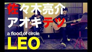 Leo - a flood of circle [SATETSU ver.]