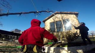 24 HR EMERGENCY TREE REMOVAL LITTLE ELM,TX