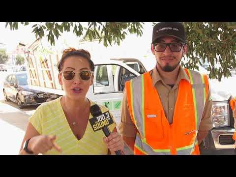 Gina, Subaru and the LA Conservation Corp