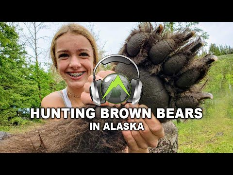 Hunting Brown Bears In Alaska Over Bait - Outdoors International Podcast