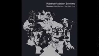 Planetary Assault Systems - Beauty In The Fear (The Black Dog's Destroyed On Purpose Mix Pt 2)