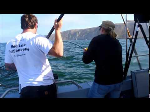 Love fish 2014 salmon fishing at bodega bay youtube for Bodega bay fishing reports