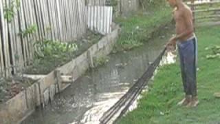 guyana 2009 059.AVI