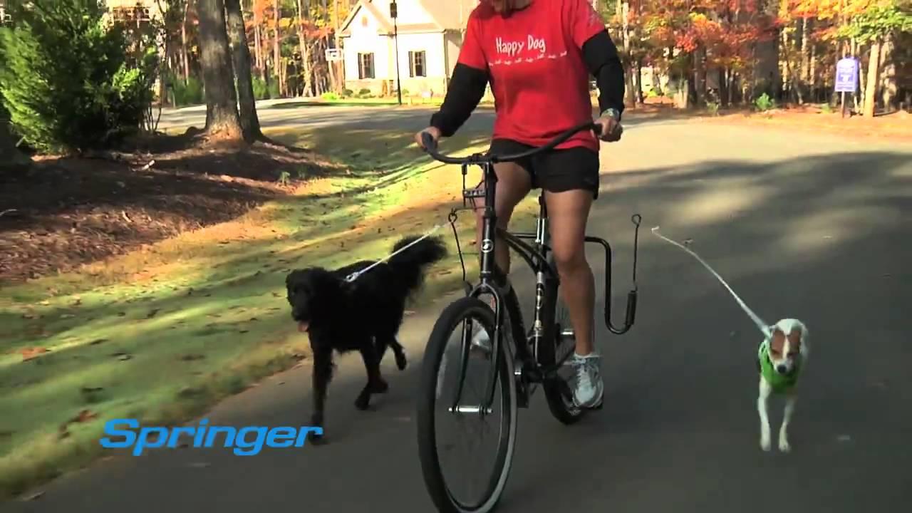 Springer Bike Jogger - YouTube