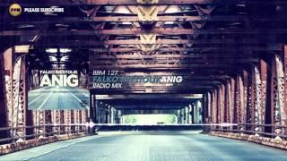 Falko Niestolik - Anig (Radio Mix)