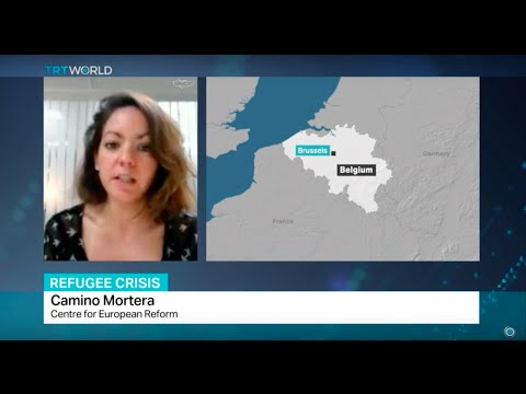 Interview with Camino Mortera from Centre for European Reform on asylum reform debate