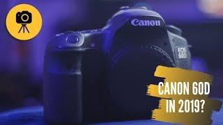 Canon 60D in 2019: Still Relevant?