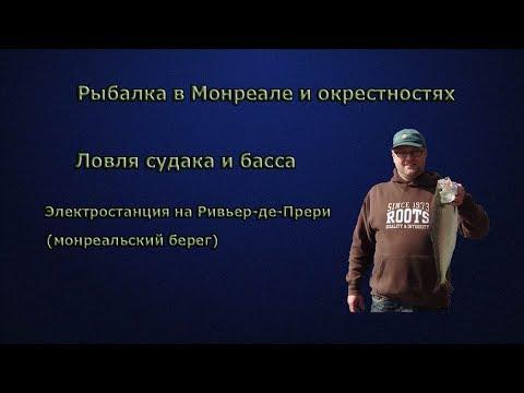 видео спиннинг