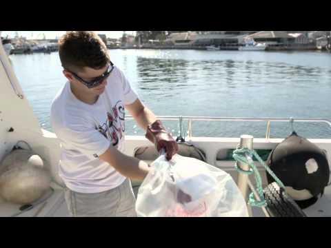Bailey's Marine Fuels -  Managing Spills