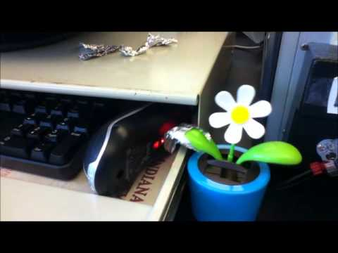 Computer mouse moved by Solar flower