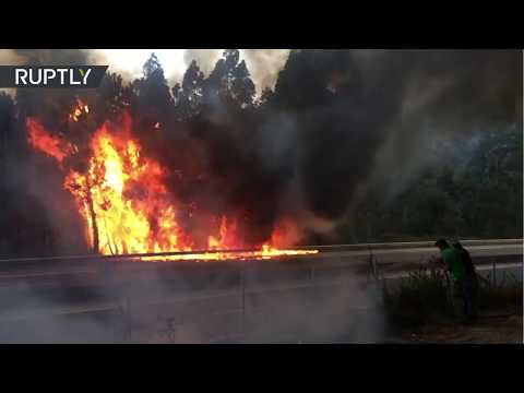 Las llamas de uno de los incendios en Galicia 'saltan' la autopista