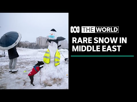 Middle East blanketed in rare snowfall | The World