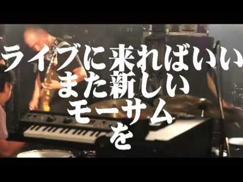 MO'SOME TONEBENDER GREEN&GOLD No Evil ONE-MAN Night 2月28日渋谷CLUB QUATTROワンマン 賀正.