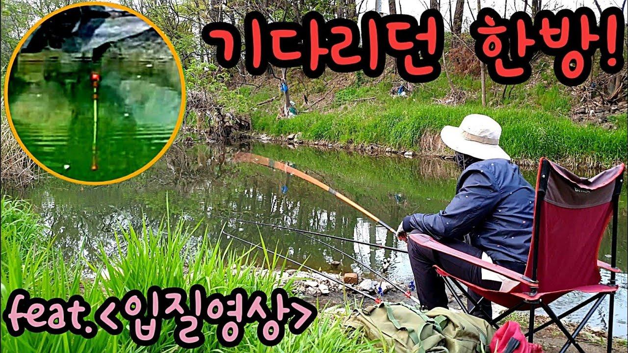 낚시 기다리던 한방! 입질영상 민물낚시 낚시유튜버 낚시동영상 fishing