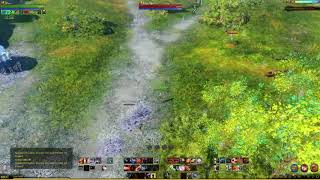 "ArcheAge - test ping with ""endless arrows"" and combo"