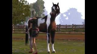 Sims 3 - A horse life
