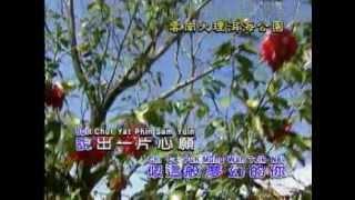 海上花-廣東版