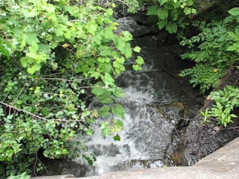 MVI 1304 - Storm Water runoff (Stream) Forest Hill Park