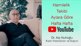 Hafta Hafta Gebelik | Hamilelik Takibi | Dr. Alp Nuhoğlu | Doktorundan Dinle #evdekal