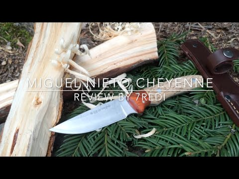 Miguel Nieto Cheyenne Review - Affordable Stainless Bushcrafter!