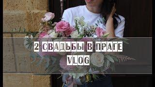 VLOG // 2 свадьбы в ПРАГЕ // Замки, монтаж во время экскурсии