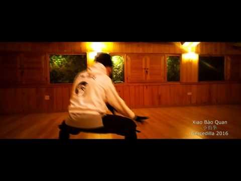 XIAO BAO QUAN | FORMA DEL SHIFU | SHAOLIN KUNG FU