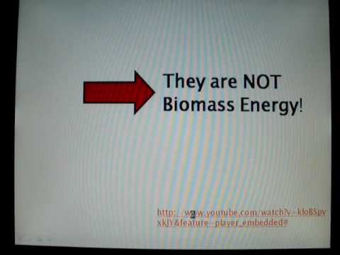 about Biomass Energy-College English pt1