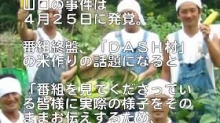 鉄腕DASHで謝罪をした城島茂に三瓶専次郎さんが送った言葉に涙、感動す...