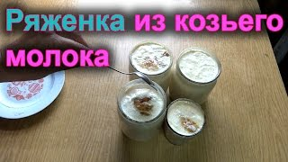 Домашняя Ряженка. Ряженка из Козьего Молока