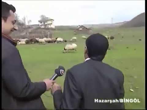 Koyunları çağıran köylü dayı püü yas yas yas